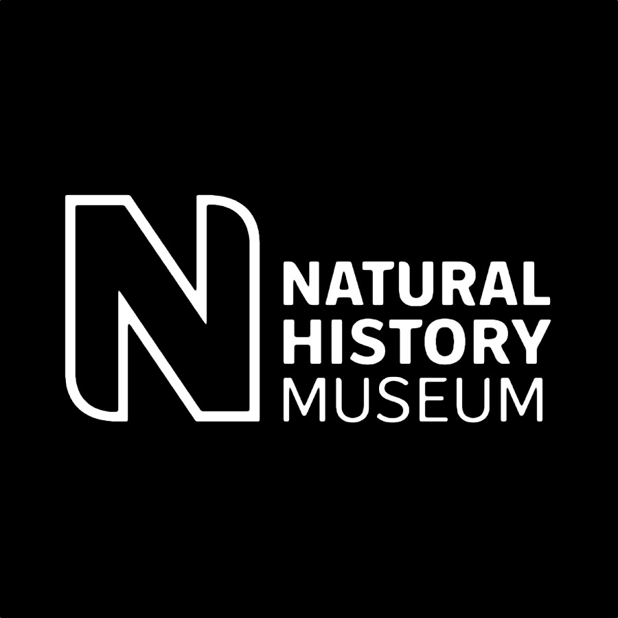 Andrea Hart – Natural History Museum